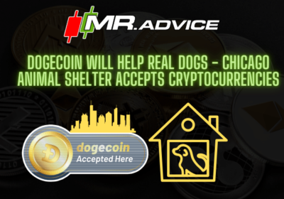 Dogecoin will help real dogs – Chicago animal shelter accepts cryptocurrencies